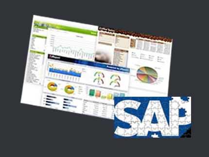 Herramientas SAP Business One
